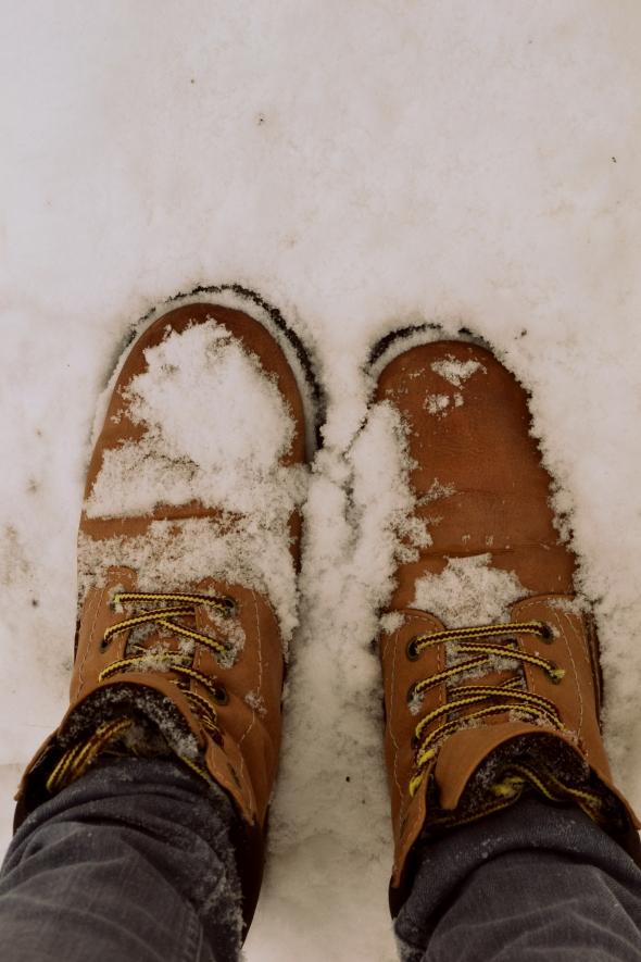 Schneeschuhe (2)